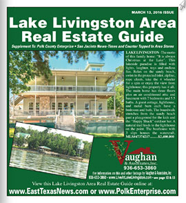 real estate guide cover 0313